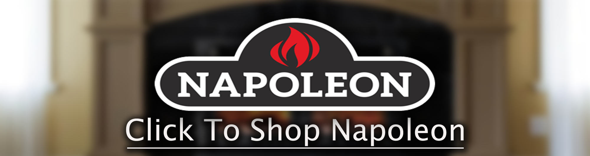 Napoleon Gas Fireplace Banner