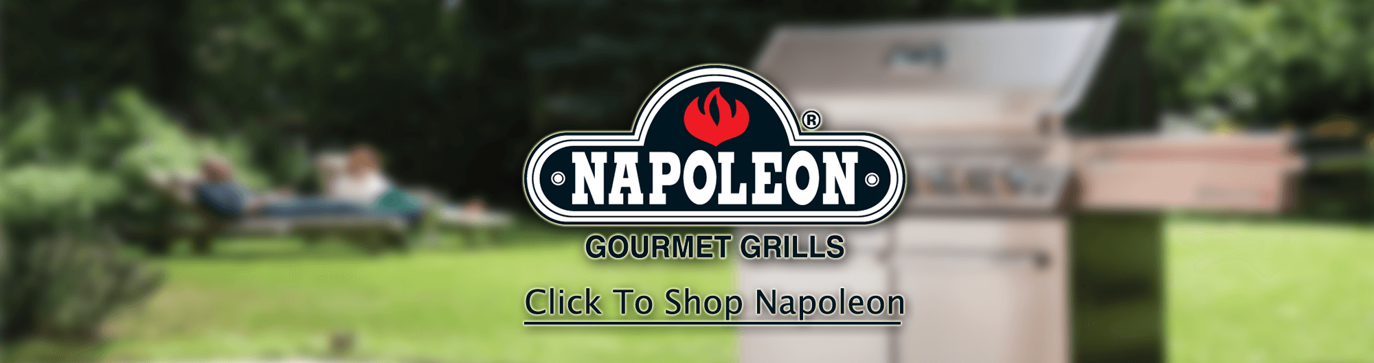Shop Napoleon Gas Grills